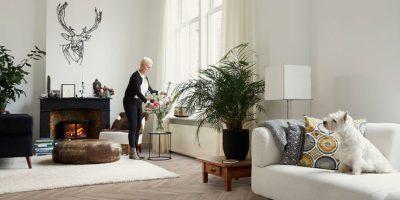 Viva floors- visgraat